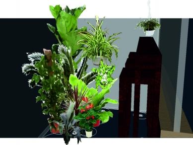 Проект 48: Озеленяване на офис